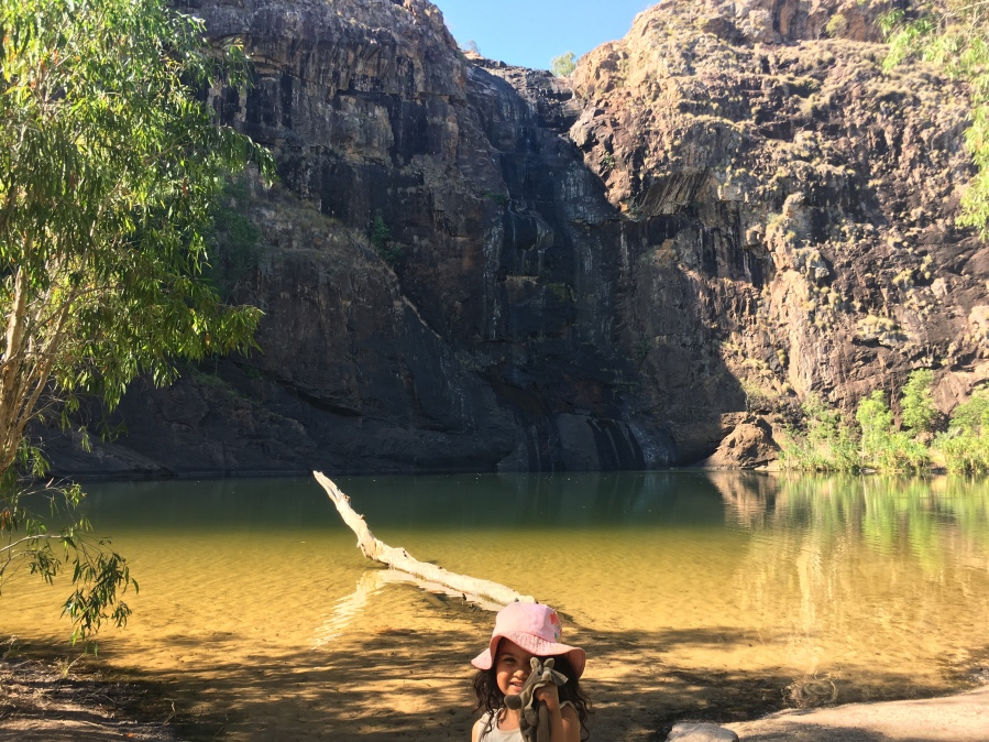 A mother's love – a short 'tale' of a missing Possum in Kakadu